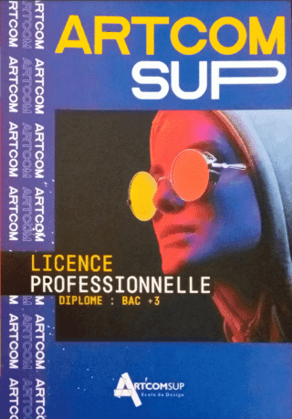 Licence pro brochure cover
